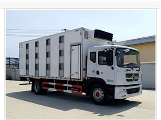 拉猪车最新价格,畜禽运输车生产厂家,做专业的大猪、猪仔、鸡苗运输车