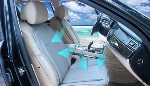 人人车告诉您驾驶教练车和日常行车特别注意事项