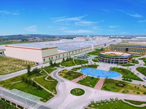 双星荣获2017年中国轮胎行业国产品牌品牌力第一名