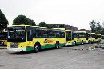 乌鲁木齐今年计划再增132辆新能源公交
