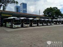 山东临沂:新能源公交年均减少烟尘排放约35.3吨