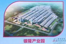 """""""黑马""""初长成珠海银隆冲刺IPO打造800亿新能源产业园"""