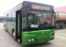山东枣庄:城乡公交通达率100%新能源公交数量达到1491辆