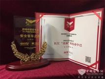 """影响中国客车业年度盘点长江""""奕阁""""实力摘星"""