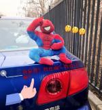 车顶放玩偶系违法行为将罚款200元记2分车主注意!