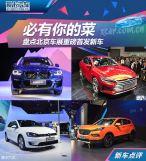 必有你的菜盘点北京车展重磅首发新车