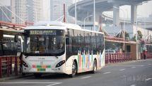 """上海""""最美公交风景线""""客运量翻倍"""