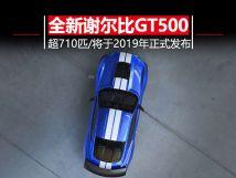 纯种美式肌肉车福特全新MustangShelbyGT500