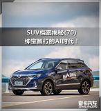 SUV档案揭秘(70)绅宝智..