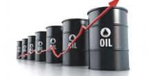 """国际油价真会""""破百""""吗?"""