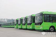 武汉:蔡甸公交一体化预计明年实施