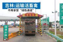 """吉林:运输活畜禽不再享受""""绿色通道"""""""
