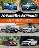 同里不同表/齐心闯市场盘点2018年征战市场的兄弟车型