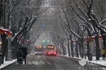 北京:受降雪影响仍有9条市郊公交线路采取临时措施
