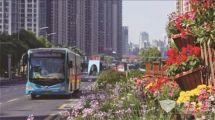 """江苏:高质量发展的龙城公交享誉全国的""""常州模式"""""""