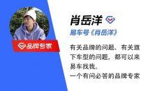 外观/内饰设计前卫吉利icon限量版将于广州车展开启预售