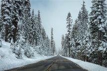 关于冬季,南北方原住民互不理..