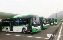 交通運輸部:小型客車免費通行時間延長
