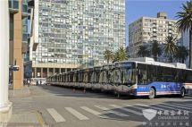 乌拉圭总统助阵比亚迪向当地最大的公交运营商交付20台纯电动大巴