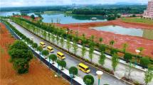 专业化运营+智慧车护航探访县级校车运营的汉寿模式