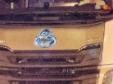 """欧拉""""扎根""""欧洲,中国品牌进入出海2.0时代"""